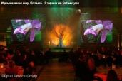 Музыкальное шоу. Польша